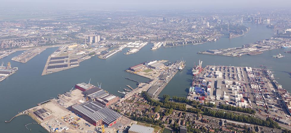 Sterke groei buitenlandse bedrijven in Zuid-Holland / RDM Rotterdam