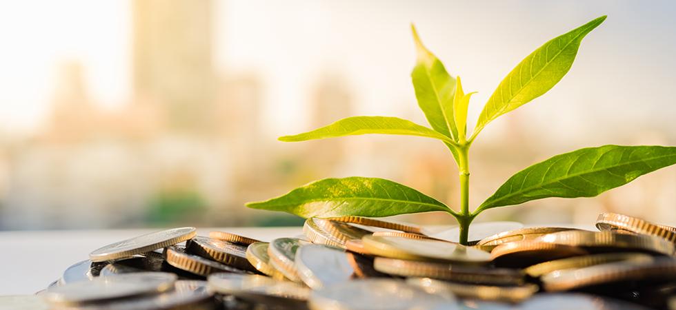 Investeren jaarcijfers NVP
